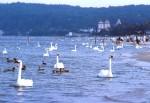 Германия, остров Рюген 1985